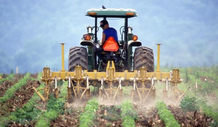 BCR acordă micilor fermieri credite APIA, pentru finanțarea capitalului de lucru, procesul de aprobare fiind mult simplificat față de 2016