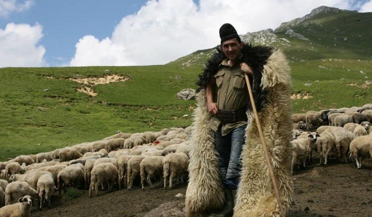 Fiscul din Alba scoate la vânzare o tonă de produse chinezești ieftine și proaste