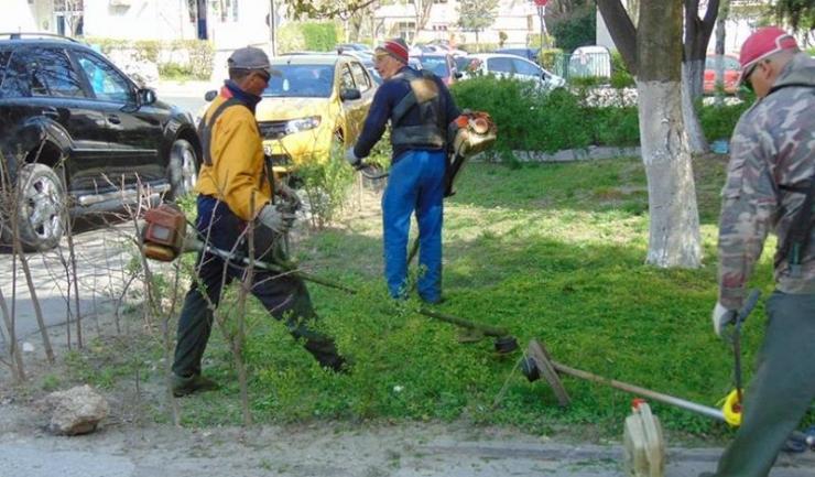 În mai multe zone din Constanța, angajați ai Primăriei și voluntari au toaletat arbori, au tuns iarba și au curățat spațiile verzi
