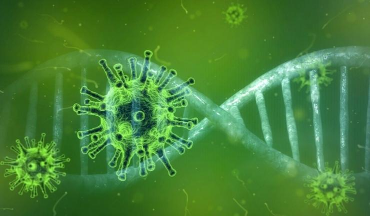 Coronavirus. În ultimele 24 de ore, au fost depistate 8.072 de cazuri noi, din 32.445 de teste (24,8%)