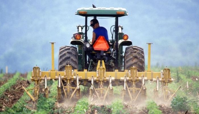 Fermierii ar face și mai multă agricultură, dar mulți români preferă să stea acasă și să aștepte ajutorul social decât să muncească la câmp