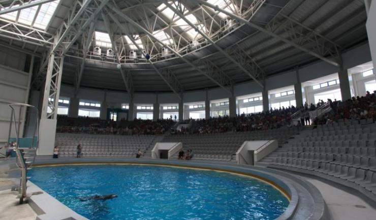 De Ziua Dobrogei, vizitatorii Delfinariului vor învăța despre istoria de 55 de milioane de ani a mamiferelor marine