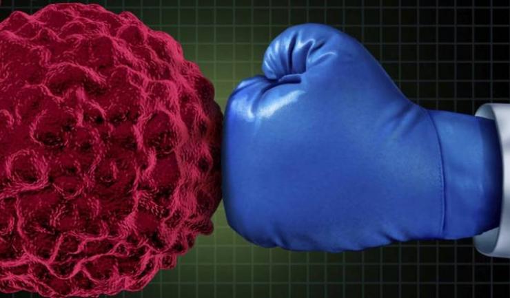 La nivel mondial, în prezent sunt studiate mai mult de 2.000 de imunoterapii oncologice, în peste 3.000 de studii clinice, pentru aprox. 300 tipuri de cancer