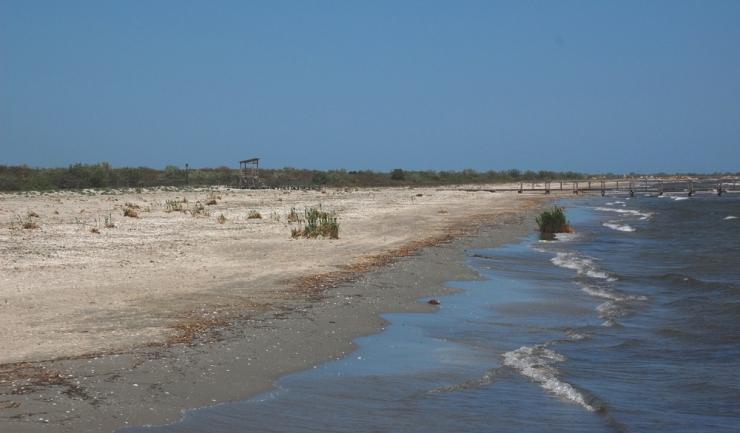 Foto: Administratia Rezervatiei Biosferei Delta Dunarii