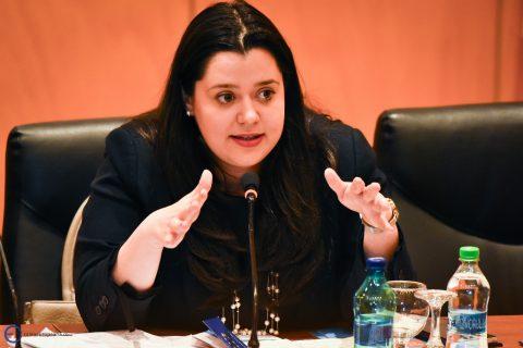 "Ana Maria Bușoniu (MFE): ""Nu vom finanța cu bani europeni proiectele câștigătoare Start-Up Nation 2017 vândute altor antreprenori"""