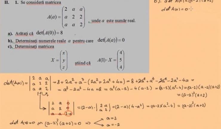 CNEE a publicat patru tipuri de subiecte pentru profilele matematică-informatică, pedagogic, ştiinţele naturii şi tehnologic