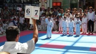 Peste 300 de sportivi au participat la Dobrogea Karate Cup