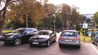 """""""Parchez ca un bou"""", în centrul orașului! Poliţia Locală doarme"""