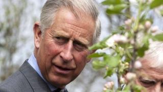 Prințul Charles, în vizită în România la sfârșitul lunii martie