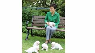 Fosta președintă sud-coreeană și-a abandonat cei nouă câini
