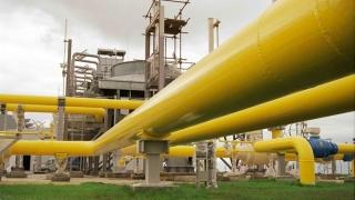 11 companii vor să transporte gaze naturale din România în Ucraina! Ce spune Gazpromul?