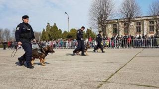 Cum se sărbătorește la Constanța Ziua Jandarmeriei Române