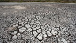 2017 - printre cei mai călduroşi ani de când se fac măsurători