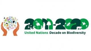 22 mai, Ziua Internațională a Diversității Biologice