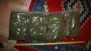 24 de percheziții la Constanța, la suspecți de trafic de droguri! Nouă arestați!