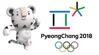 România va fi reprezentată de 25 de sportivi la Jocurile Olimpice de iarnă de la PyeongChang