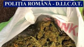 Peste 30 de kilograme de droguri, bani falşi şi echipamente IT - confiscate