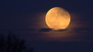 De ce vei fi cu ochii pe cer toată noaptea