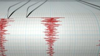 Cutremur de 6,2 grade în SUA
