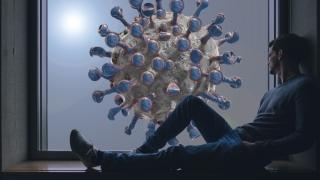 8.262 cazuri noi de persoane infectate cu SARS - CoV – 2, aproximativ un sfert din testele efectuate