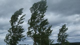 8 judeţe din sudul ţării şi Bucureştiul au fost afectate de cantităţile mari de grindină care au căzut.