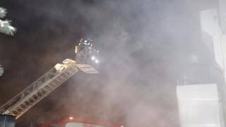 Doi tigri și alte animale au pierit într-un incendiu la un grajd al circului