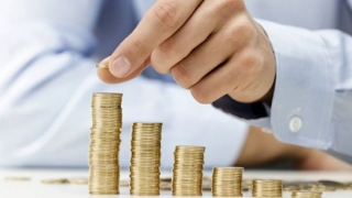 Legea salarizării a fost adoptată în Parlament