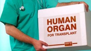 Agenția Națională de Transplant! Memorandum pentru concursul de director executiv