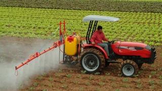 TVA-ul la materiile prime agricole, redus la 9%