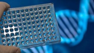 Analiza ADN, importantă pentru prezicerea speranței de viață a unei persoane