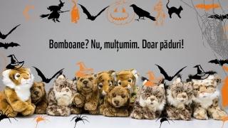 Animalele şi pădurile au nevoie de ajutor! Adoptă simbolic un animal şi sprijină WWF!