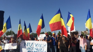 Protest de amploare împotriva vaccinării obligatorii: Lanț uman în jurul Parlamentului