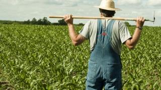 APIA lucrează în zilele de 30 aprilie şi 1 mai! În sprijinul fermierilor