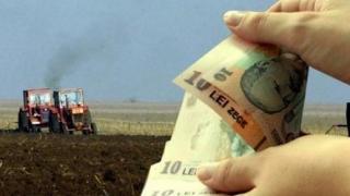 15 mai, termen limită pentru solicitarea subvențiilor agricole!!