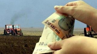 APIA: Demarează campania de primire a cererilor unice de plată pentru 2019!