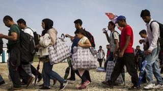 109 migranţi ilegali şi trei călăuze, arestați în provincia Izmir
