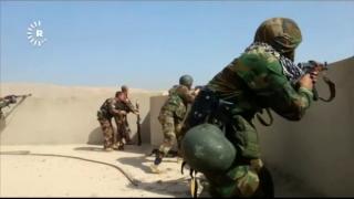 OMS primește informații 'frecvente' despre atacuri chimice în Irak