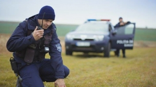Atenţie! Pesta porcină în Bulgaria! Ce se întâmplă la graniţa cu România?