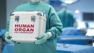 Statul român, implicat în trafic de organe?! Un deputat sesizează DIICOT