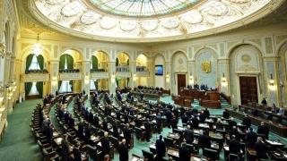 Audierea prefectului şi ministrului de Interne în Senat a fost anulată