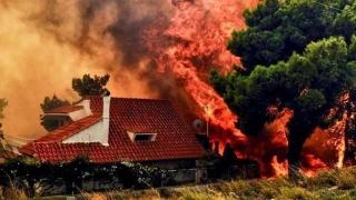 """Autorităţile din Grecia, acuzate de omor din culpă în contextul """"catastrofei biblice"""" soldate cu cel puţin 91 de morţi!"""