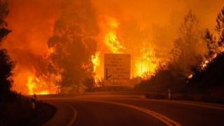 Avion cisternă, prăbușit în mijlocul incendiilor din Portugalia