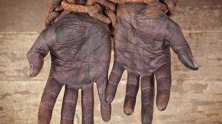 Beneficiarii de ajutoare sociale, sclavi la ferma primarului!