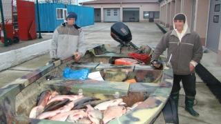Braconierii au ieșit la pește. Polițiștii i-au prins în plasă!