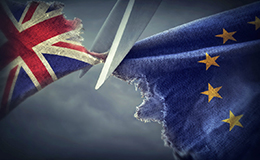 """Majoritatea britanicilor susţin un Brexit """"prin orice mijloace"""""""