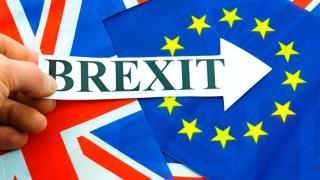 """Guvernul Theresa May, """"dezamăgit"""" de poziţia Camerei Lorzilor privind Brexit"""