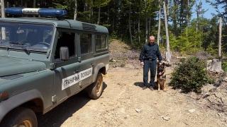 Captură impresionantă de heroină la granița Bulgariei cu Serbia