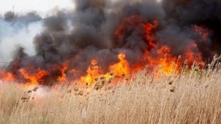 12 incendii de vegetație într-o zi! Pompierii trag un semnal de alarmă!