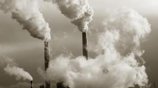 23% din decesele lumii, cauzate de probleme de mediu