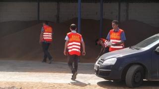 Antifrauda atacă evaziunea cu cereale din Portul Constanța